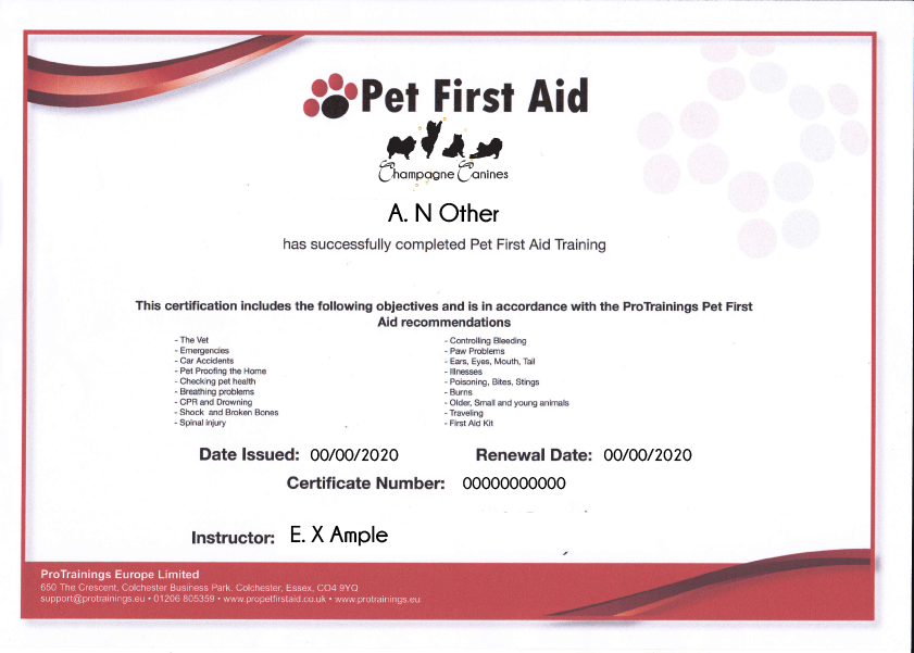 Approved Pet First Aid Centre